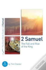 2 Samuel The Fall And Rise Of The