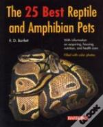 25 Best Reptile And Amphibian Pets
