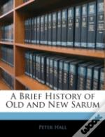 A Brief History Of Old And New Sarum