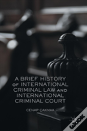 A Brief History Of The International Criminal Court