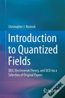 A Concise Introduction To Quantum Electrodynamics