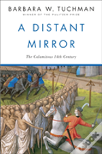 A Distant Mirror