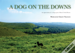 A Dog On The Downs