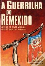 A Guerrilha do Remexido