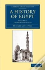 A History Of Egypt: Volume 6, In The Middle Ages