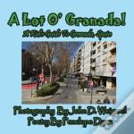A Lot O' Granada, A Kid'S Guide To Granada, Spain