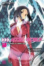 Accel World, Vol. 14 (Light Novel)