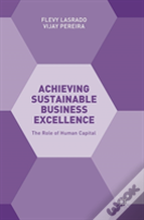 Achieving Sustainable Business Excellence