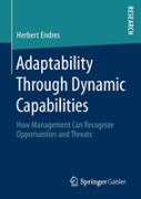 Adaptability Through Dynamic Capabilities