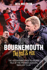 Afc Bournemouth, The Fall And Rise