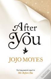 Summary after you jojo moyes