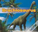 All About Dinosaurs