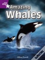Amazing Whalespurple Non-Fiction