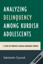 Analyzing Delinquency Among Kurdish Adolescents