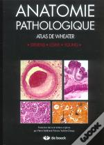 Anatomie Pathologique ; Atlas De Wheater