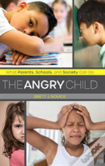 Angry Childwhat Parents Schoocb