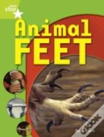 Animal Feetgreen Level