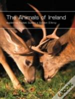 Animals Of Ireland