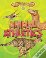 Animalympics Pack A Of 4