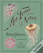 Art Forms In Nature Posters