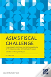 Asia'S Fiscal Challenge