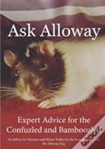 Ask Alloway
