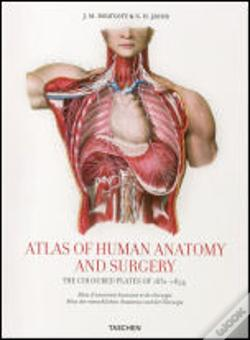 Wook.pt - Atlas of Human Anatomy and Surgery
