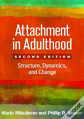 Attachment In Adulthood