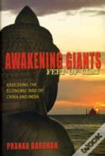 Awakening Giants Feet Of Clay