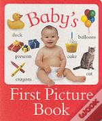 Babys First Picture Book