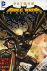 Batman Bruce Wayne The Road Home Tp