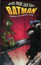 Batman Through The Looking Glass Hc