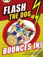 Bc Brown A/3c Flash The Dog Bounces In!
