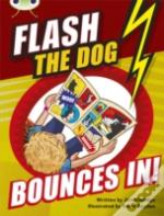 Bc Brown A/3c Flash The Dog Bounces In! 6pk