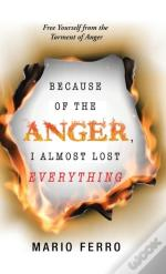 Because Of The Anger, I Almost Lost Everything