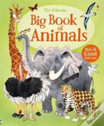 Big Book Of Animals