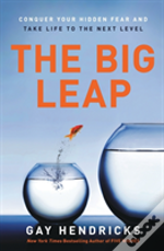 Big Leap The
