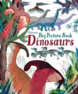 Wook.pt - Big Picture Book Dinosaurs