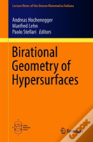 Birational Geometry Of Hypersurfaces