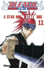 Bleach T.11 ; A Star And A Stray Dog