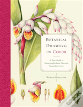 Botanical Drawing In Color