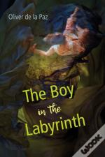Boy In The Labyrinth