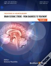 Brain Ischemic Stroke - From Diagnosis To Treatment, (Frontiers In Neurosurgery Volume 3)