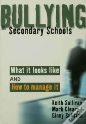 Bullying In Secondary Schools