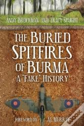 Buried Spitfires Of Burma