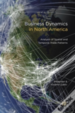 Business Dynamics In North America
