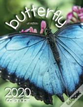 Butterfly 2020 Calendar (Uk Edition)