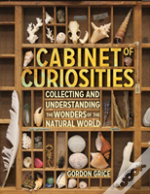 Cabinet Of Curiosities: A Kid'S Guide To Collecting And Understanding The Wonders Of The Natural World