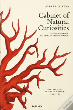 Wook.pt - Cabinet of Natural Curiosities