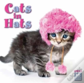 Cats In Hats W